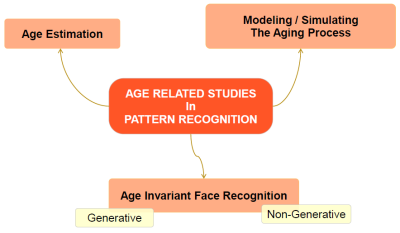 The Big Picture in Age Estimation by Using Still Face Images